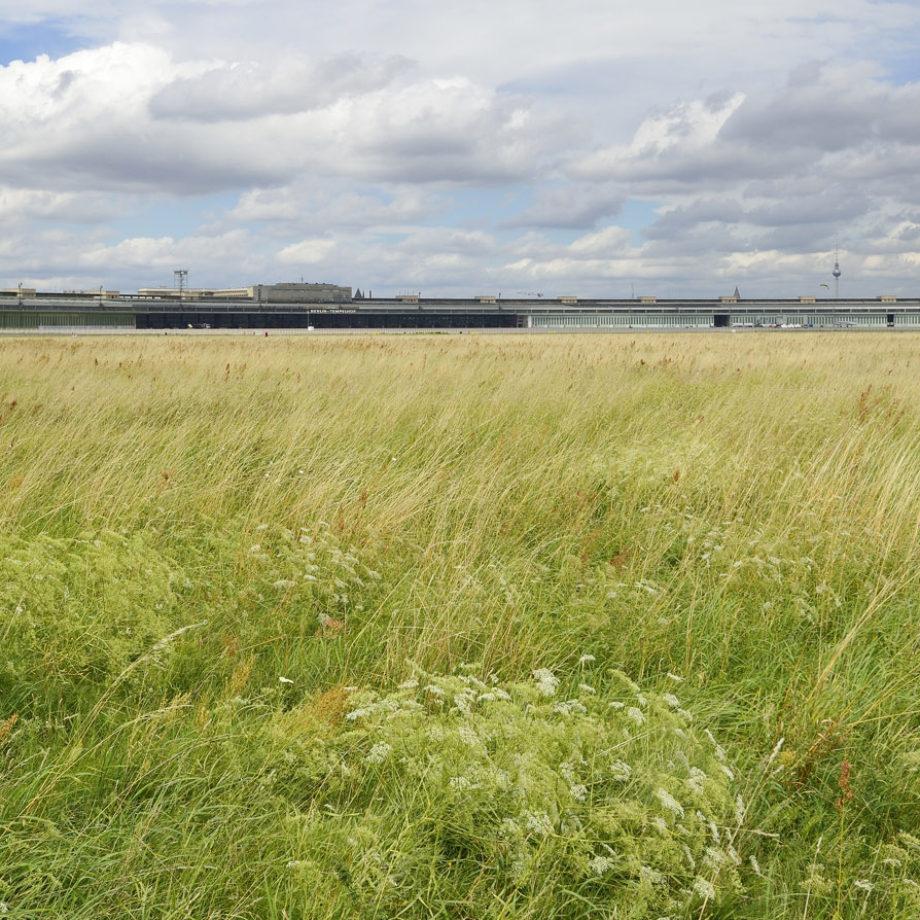Wiesenmahd auf dem Tempelhofer Feld